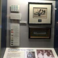 History of the Duck Stamp