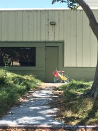 Egret next to Google Bike