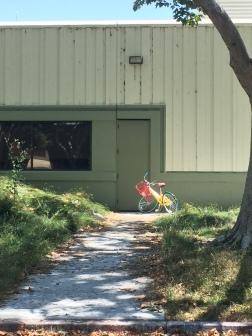 Egret next to Google Bike
